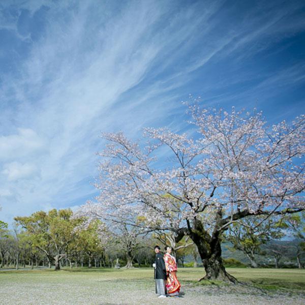 撮影プラン(熊本)を見る