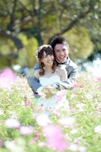 能古島結婚写真前撮り01コスモス