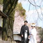 熊本,和装,洋装,前撮り,結婚式当日,,サクラ熊本城前撮りプラン-03