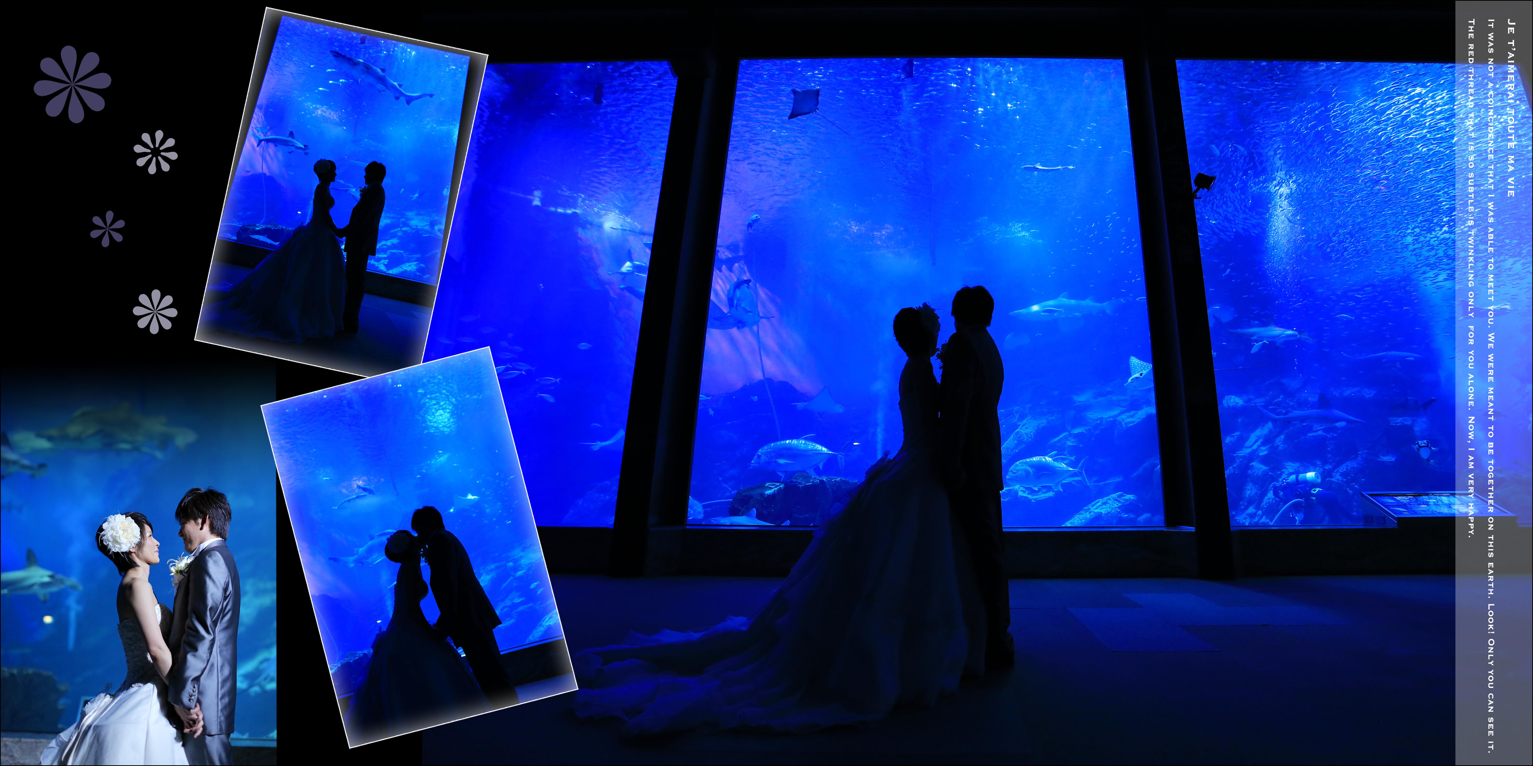 福岡,和装,洋装,前撮り,結婚式当日,,マリンワールド海の中道