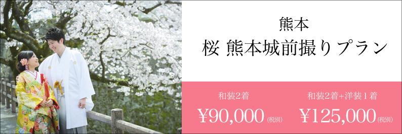 桜 前撮り 熊本 スタジオフィール