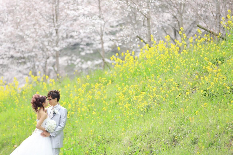 福岡 桜前撮りプラン