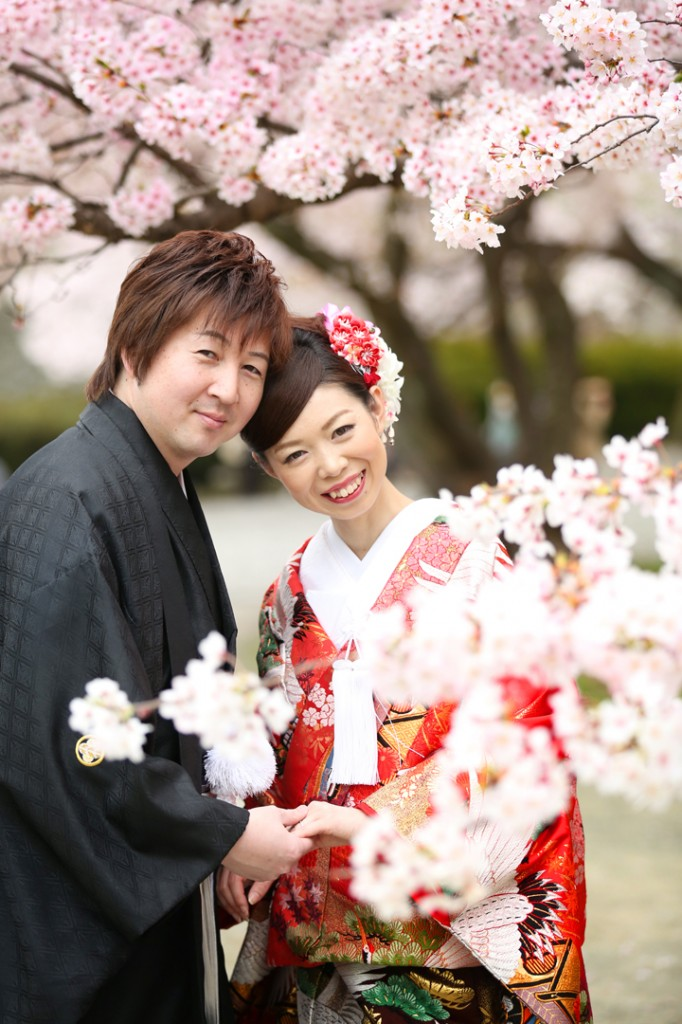 桜 和装  前撮り
