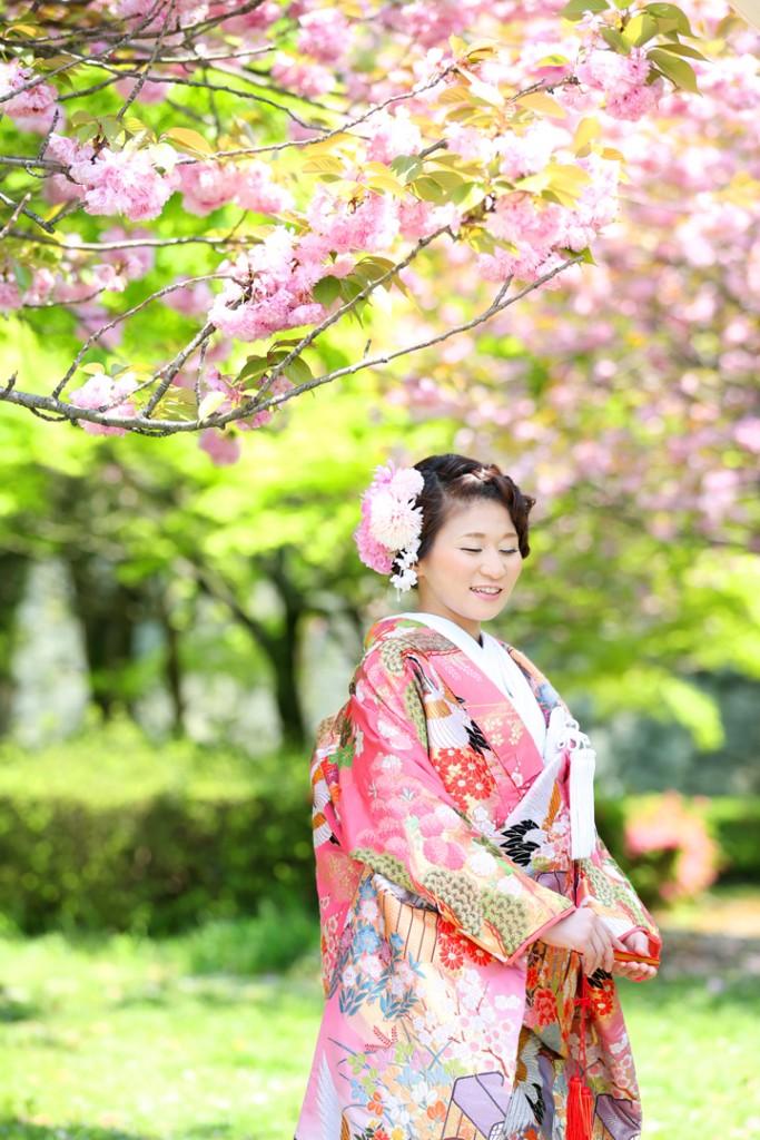 和装 福岡  桜