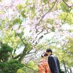 福岡,和装,洋装,前撮り,結婚式当日,,桜前撮りプラン-04