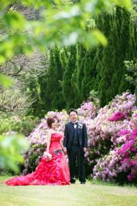 前撮り 婚礼 ドレス 海 志賀島 つつじ
