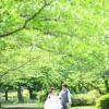 前撮り スタジオフィール 福岡 舞鶴公園