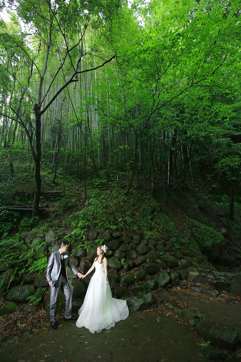 熊本・白糸の滝