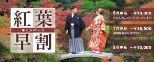 kouyou_hayawari_maedori_fukuoka_kumamoto_cam_2