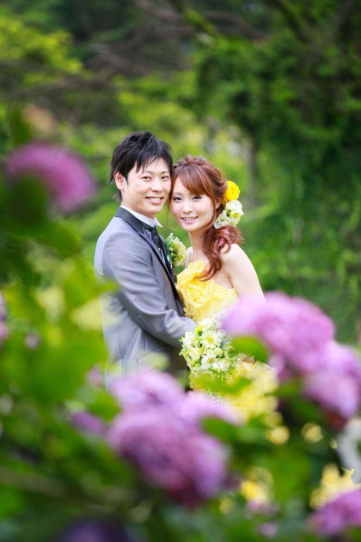 福岡 前撮り ドレス 洋装 海 志賀島 森 紫陽花