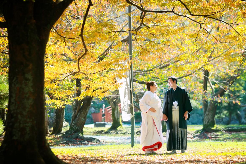 福岡 前撮り 和装 紅葉 婚礼写真 舞鶴公園