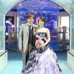 福岡,和装,洋装,前撮り,結婚式当日,,福岡 前撮り マリンワールド001
