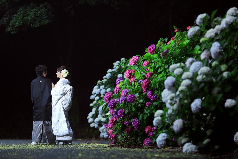 前撮り スタジオフィール 福岡 白糸の滝