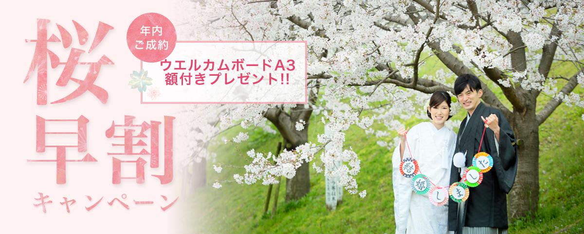 桜キャンペーン スタジオフィール 福岡 熊本 鹿児島