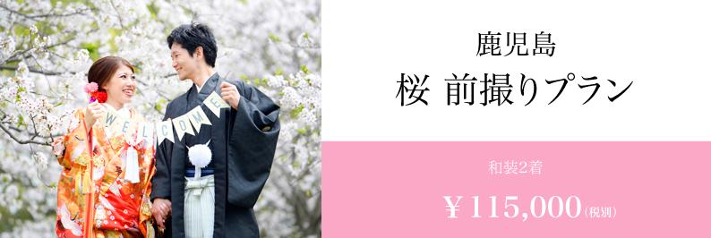 桜前撮り 鹿児島 スタジオフィール 和装前撮り