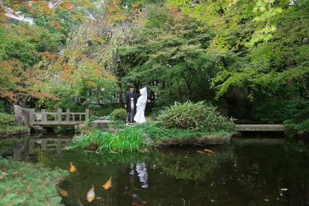 福岡 日本庭園前撮りプラン-前撮り・楽水園
