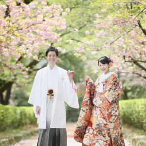 熊本城 和装前撮り スタジオフィール 婚礼 桜