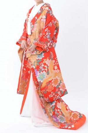 福岡色打掛けF-044 赤洋花