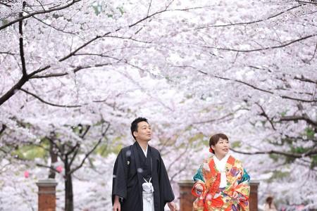 桜小倉城前撮りプラン-