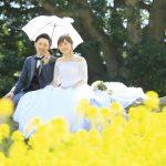 福岡,和装,洋装,前撮り,結婚式当日,,能古島 菜の花 前撮り 福岡 スタジオフィール