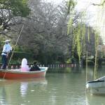 熊本,和装,洋装,前撮り,結婚式当日,,柳川川下り3