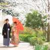 山口・長府庭園の桜