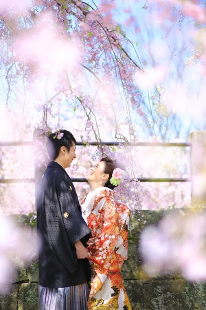 福岡 桜前撮りプラン-桜前撮りプラン-06
