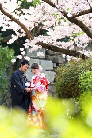 福岡 桜前撮りプラン-桜前撮りプラン-11