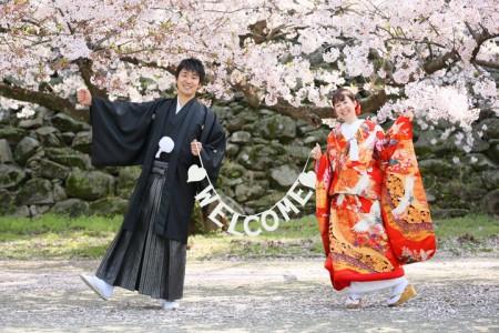 福岡 桜前撮りプラン-桜前撮りプラン