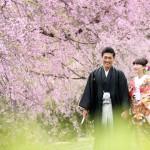 福岡,和装,洋装,前撮り,結婚式当日,,桜前撮りプラン-03