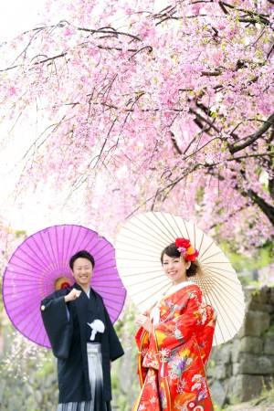 福岡 桜前撮りプラン-桜前撮りプラン-07
