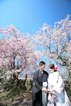 桜プラン早割キャンペーン2018-前撮り スタジオフィール 福岡 舞鶴公園