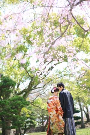福岡 桜前撮りプラン-桜前撮りプラン-04