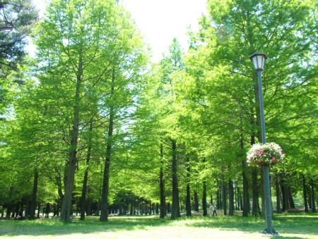 大分・別府公園