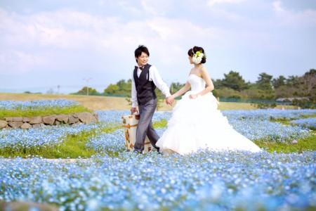 福岡 前撮り ドレス 海ノ中道海浜公園