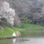 北九州,広島,福岡,長崎,山口,佐賀,大分,和装,洋装,前撮り,結婚式当日,,熊本・立田山公園