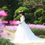 福岡,和装,洋装,前撮り,結婚式当日,,能古島・前撮りコスモス