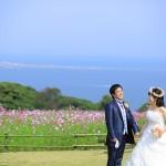 福岡,和装,洋装,前撮り,結婚式当日,,能古島005コスモス