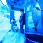 福岡,和装,洋装,前撮り,結婚式当日,,福岡 前撮り マリンワールド003