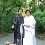 北九州,福岡,和装,洋装,前撮り,結婚式当日,,宗像大社0006