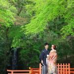 大分,和装,洋装,前撮り,結婚式当日,,前撮り スタジオフィール 大分 宇佐神宮