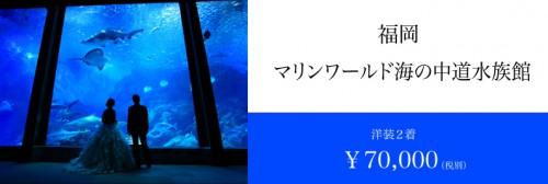 スタジオフィール 福岡 水族館 マリンワールド