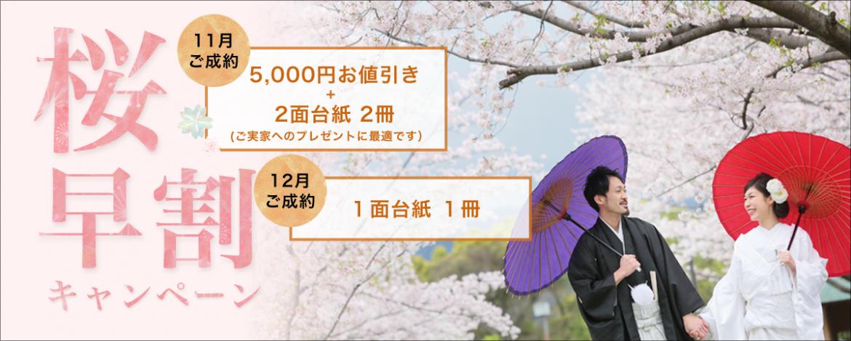 桜 前撮り福岡 熊本 鹿児島 スタジオフィール