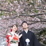 福岡,和装,洋装,前撮り,結婚式当日,,桜前撮りプラン
