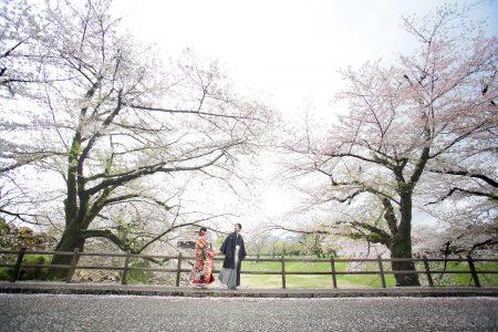 【熊本店】桜プラン早割キャンペーン2019-熊本 スタジオフィール 桜