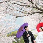 桜 熊本 熊本城 復興 前撮り スタジオフィール