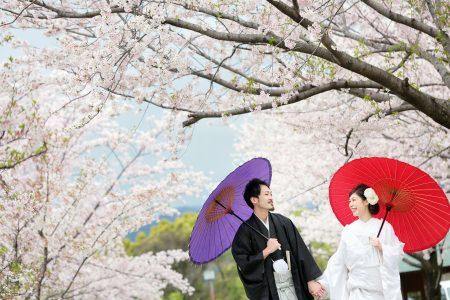 桜プラン早割キャンペーン2018-