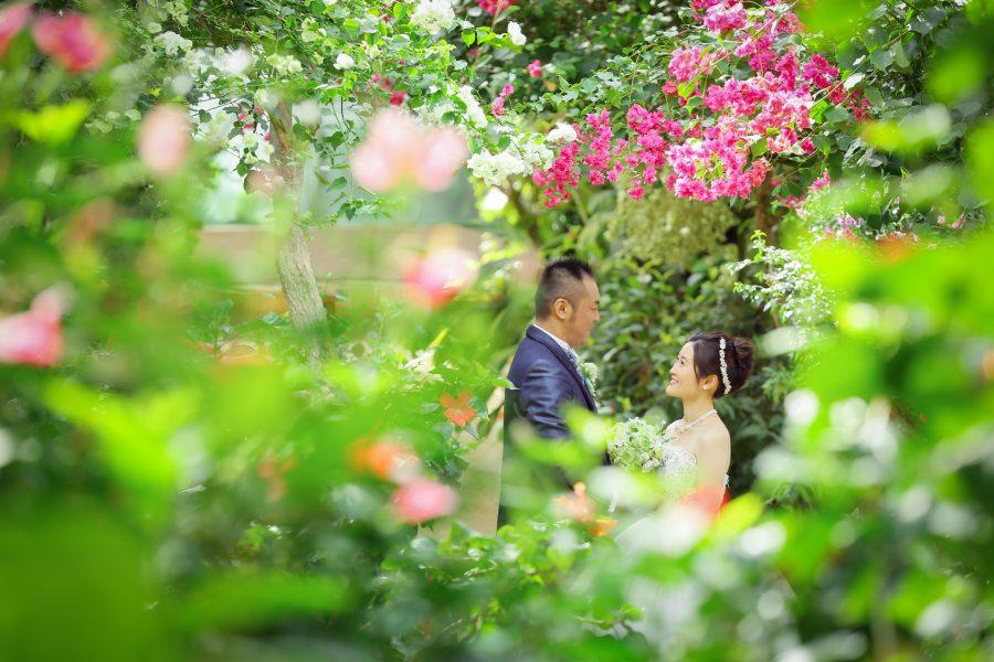 福岡 植物園 ドレス 前撮り スタジオフィール