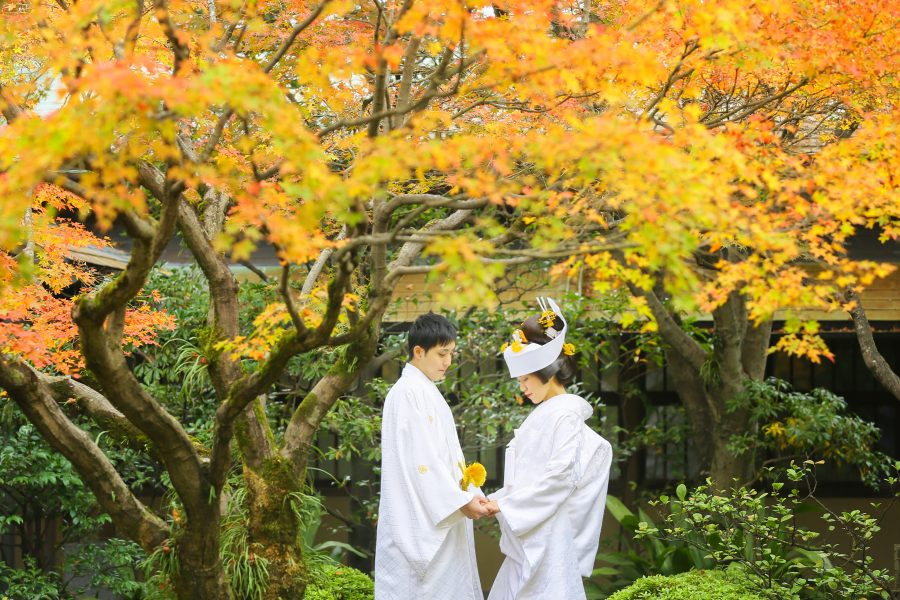 福岡 紅葉 前撮り 日本庭園 スタジオフィール