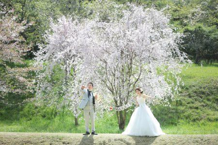 熊本 立田山 自然公園 スタジオフィール 桜 紅葉 和装 洋装 ドレス